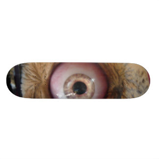 dead eye custom skateboard