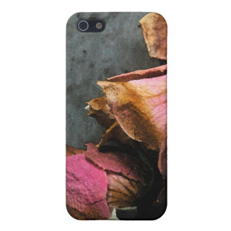Dead Roses Macro Watercolor iPhone 5C matte Cover For iPhone 5/5S