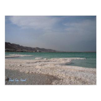 Dead Sea, Israel. Postcard