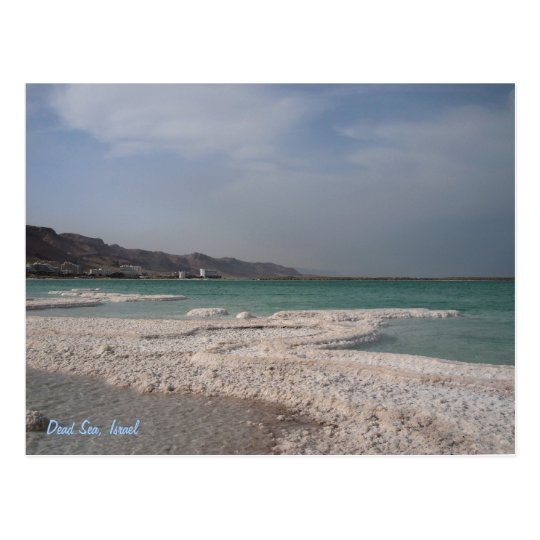 Dead Sea, Israel. Postcard