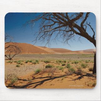 dead tree at dune 45 in desert landscape of mouse mat