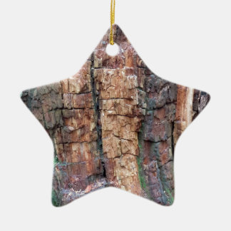 Dead tree bark ceramic star decoration