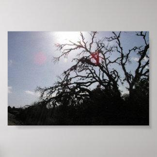 Dead_Tree_E-Rock2 Print