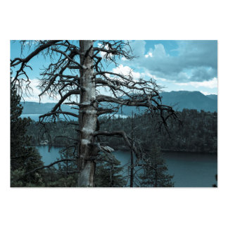 Dead Tree In Lake Tahoe Pack Of Chubby Business Cards