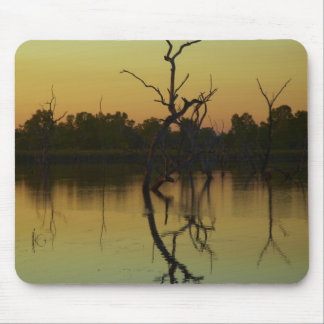 Dead trees reflected in Lily Creek Lagoon, dawn Mouse Mat