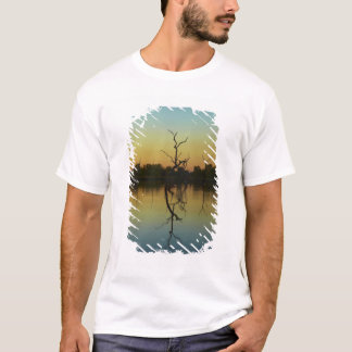 Dead trees reflected in Lily Creek Lagoon, dawn T-Shirt