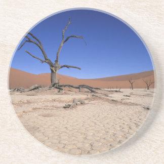 Dead Vlei, Sossusvlei, Namib-Naukluft National Coaster