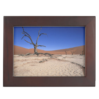 Dead Vlei, Sossusvlei, Namib-Naukluft National Keepsake Box