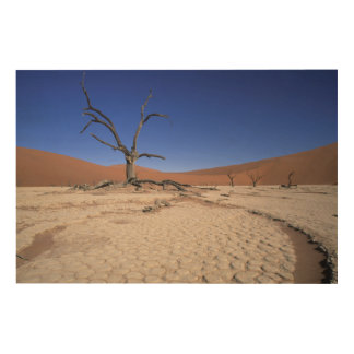 Dead Vlei, Sossusvlei, Namib-Naukluft National Wood Wall Decor