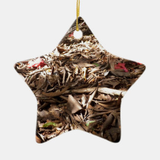 Dead wood and leaves on the forest floor. christmas ornament