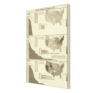 Deaf, Paupers, Prisoners statistical map Canvas Print