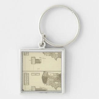 Deaf, Paupers, Prisoners statistical map Key Ring