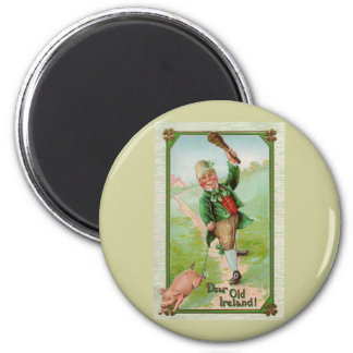 Dear Old Ireland Vintage St Patrick s Day Magnets