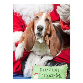Dear Santa I can Explain Basset Hound Postcard