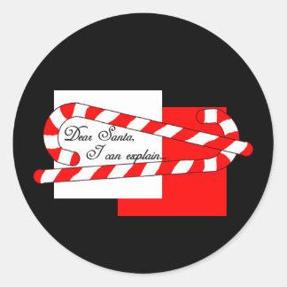 Dear Santa, I Can Explain Round Stickers