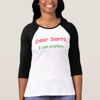 Dear Santa I can explain Tshirts