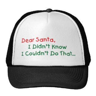 Dear Santa, I Didn't Know Hat