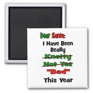 Dear Santa Magnet