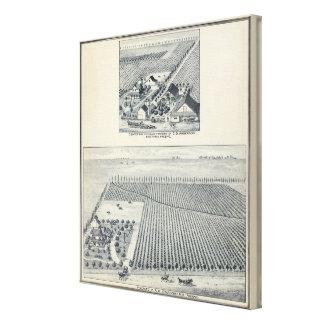 Deardorff and Centennial Vineyards, California Canvas Prints