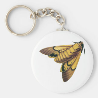 Death s Head Hawk Moth Keychains