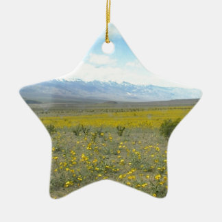 Death Valley in Bloom Christmas Ornament