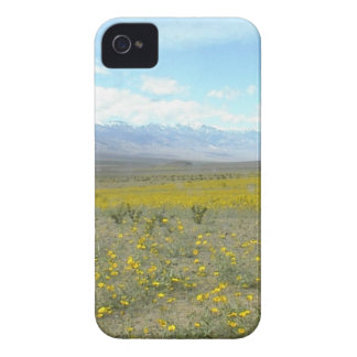 Death Valley in Bloom iPhone 4 Covers