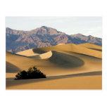 Death Valley Sand Dunes... Postcards