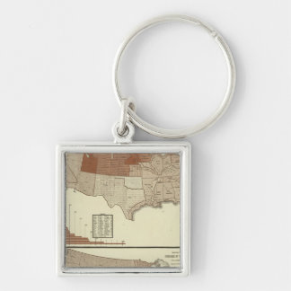 Deaths, diphtheria, digestive system Silver-Colored square key ring