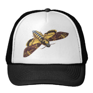 Death's Head Hawk Moth Cap