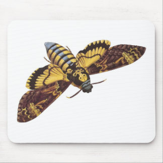 Death's Head Hawk Moth Mouse Mat