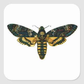 Death's Head Moth Square Sticker