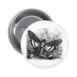 Deathshead Hawk Moth Buttons