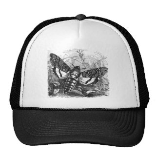 Deathshead Hawk Moth Trucker Hat