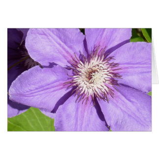 Debbie's Clematis Greeting Card