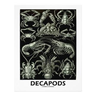 Decapods 21.5 Cm X 28 Cm Flyer