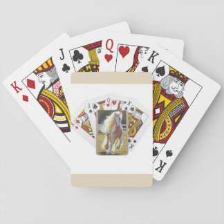 Deck of playing cards with a beautiful horse