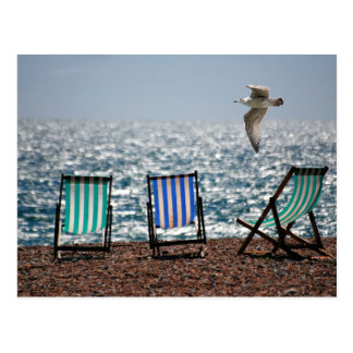 Deckchairs sea beach seagull beautiful scenery postcard