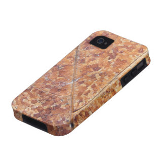 Decomposing Oak Leaf ~ iPhone 4 CaseMate Vibe iPhone 4/4S Cover