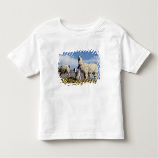 Decorated lama herd in the Puna, Andes mountains 3 Toddler T-Shirt