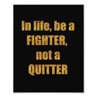 DECORATIONS on KODAK  Wisdom: LIFE Fighter Quitter Art Photo