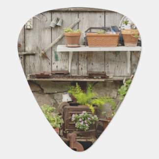 Decorations on wooden fence, Catalina Island, Guitar Pick