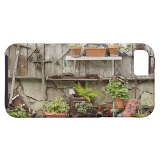 Decorations on wooden fence, Catalina Island, iPhone 5 Case