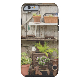 Decorations on wooden fence, Catalina Island, Tough iPhone 6 Case