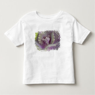 Decorative cabbage toddler T-Shirt