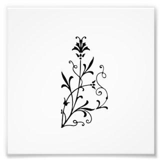 Decorative Floral Flourish Photo Print