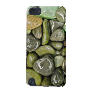 Decorative landscaping rocks iPod touch 5G case