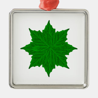 Decorative Ornament Isolated Plants