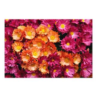 Decorative pink and orange flowers photo