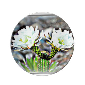 Decorative Porcelain Plate - Two Cactus Flowers