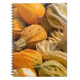 decorative pumpkins spiral notebook